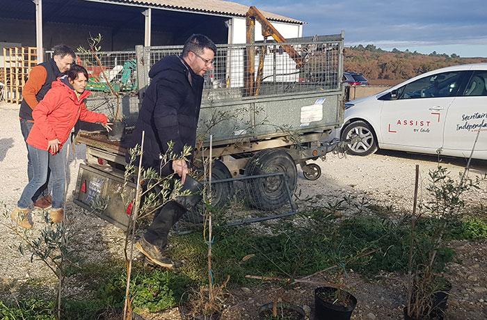 entrepreneurs pour la plantation d'arbres champêtres en agroforesterie