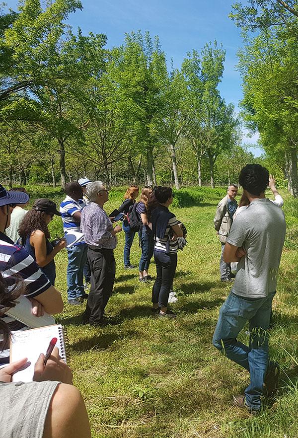 Visite du projet arbratatouille à Roumassouze